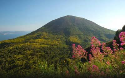 Ente Parco Nazionale del Vesuvio e Vigili Del Fuoco insieme per la campagna AIB 2020