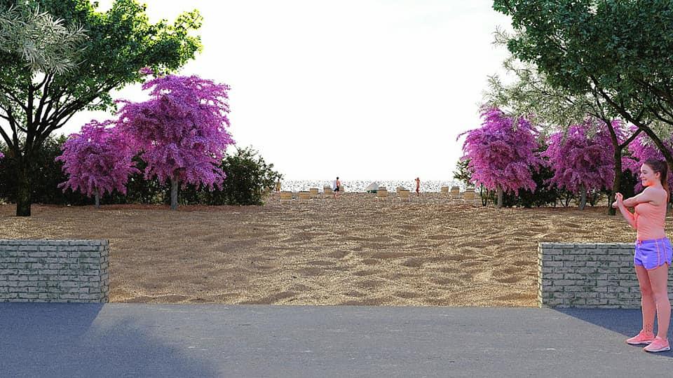 Barieră verde pe litoral. Salcii și cătini pe marginea plajelor
