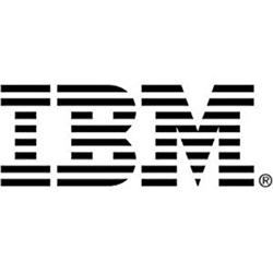 IBM procurement and IT service provider