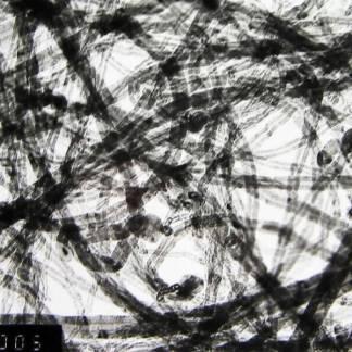Multi Walled Carbon Nanotubes 30-50nm