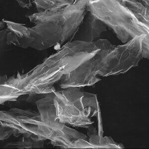 F Functionalized Graphene Nanoplatelets SEM Image