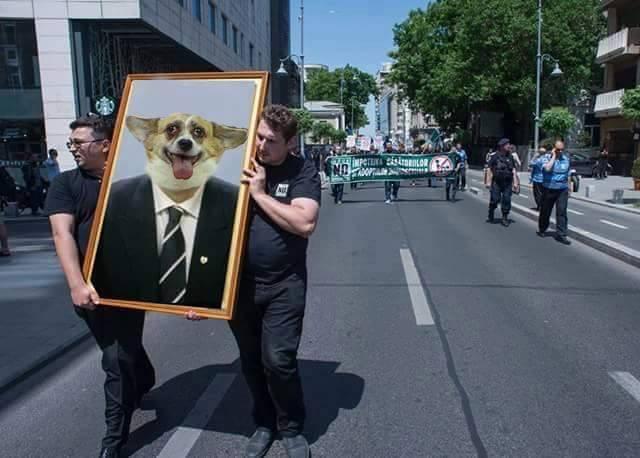 Corneliu Vadim Tudor meme. FOTO Facebook