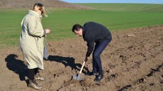 Avocatul Dumitru Bădrăgan, la plantare. FOTO Adrian Boioglu