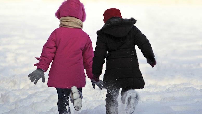 Copiii nu mai merg prin zăpadă la școală. FOTO a1.ro