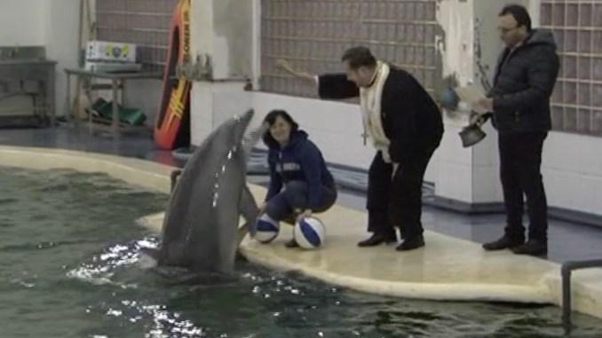 Botezul delfinilor de la Constanța