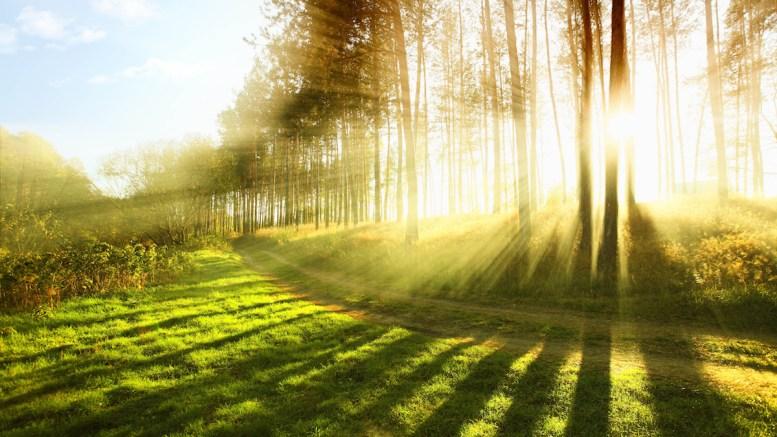 Soare și vreme frumoasă. FOTO zastavki.com