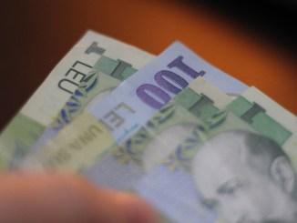 bani, lei, spaga, mita