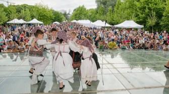 festivalul multiculturalitatii (2)