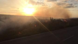Incendiu vegetatie uscata. FOTO Adrian Boioglu