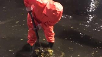 Angajații RAJA au desfundat și eliberat gurile de canal astupate cu resturi vegetale. FOTO SC RAJA SA