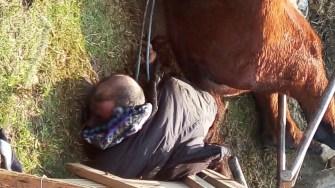 Un bărbat a murit după ce s-a răsturnat căruța peste el. FOTO