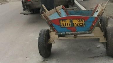 Căruțașul a fost lăsat fără atelajul hipo. FOTO Poliția Locală