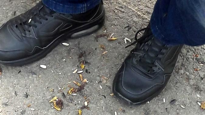 Spartul semințelor, aruncatul de mucuri de țigări și gunoaie dăunează grav portofelului. FOTO DGPL Constanța