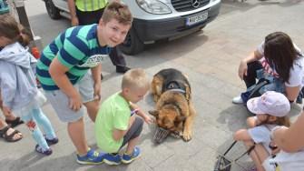 Câinii s-au lăsat și ei la plăcerea copiilor de a-i mângâia. FOTO Cătălin SCHIPOR
