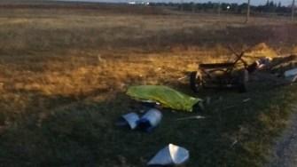 Căruța a fost spulberată, iar o persoană a decedat. FOTO IPJ Constanța