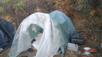 Tabăra de nomazi a fost desființată. FOTO DGPL Constanța