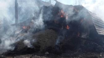 Joaca copiilor a dus la un puternic incendiu. FOTO ISU Dobrogea