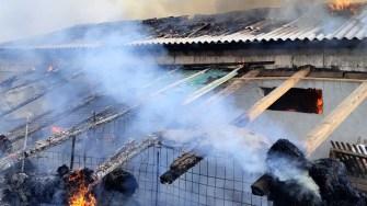 Flăcările au cuprins grajdul, cu tot cu animale în el. FOTO ISU Dobrogea