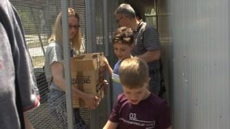 Programul Baby Zoo de la Complexul Muzeal de Științe ale Naturii Constanța. FOTO Paul Alexe