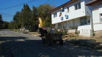 Primăria comunei Aliman. FOTO Paul Alexe