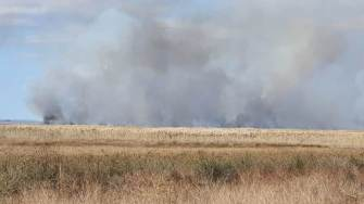 Incendiu de vegetație uscată la Vadu. FOTO ISU Dobrogea