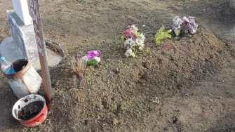 Igienizarea cimitirului din Gârliciu. FOTO Facebook