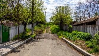 Strada neasfaltată din Gârliciu. FOTO Paul Alexe