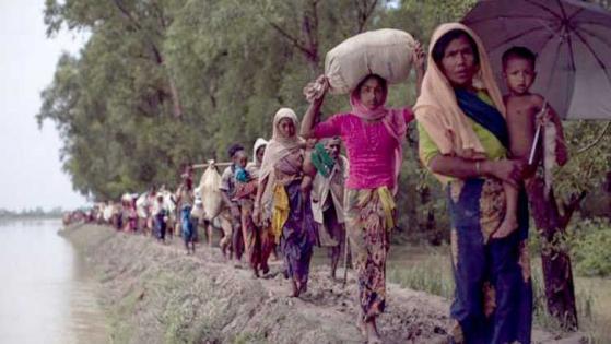 রোহিঙ্গারা ফিরে যাওয়ার মতো পরিস্থিতি এখনো সৃষ্টি হয়নি: রেডক্রস