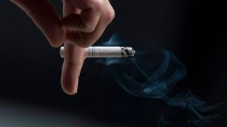 Smoking pack of cigarettes a day causes average 150 DNA mutations a year in lung cells