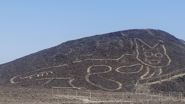 Massive ancient drawing of cat discovered on hill in Peru