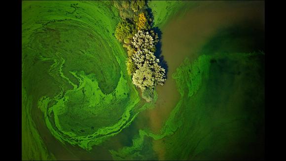 """""""Gangrena"""" es el título de esta fotografía tomada por Fair en Luisiana, en octubre de 2010. Se trata de otra vez de los restos generados en una fábrica de herbicidas. Foto: J. Henry Fair/Cortesía: Galería Gerald Peters."""