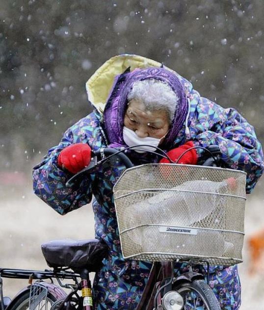 Graves nevadas castigan ahora a la población japonesa.