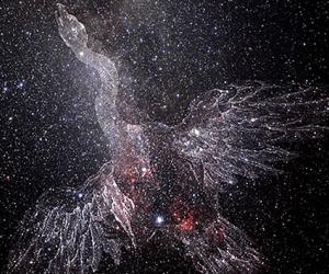 constelacion-del-cisne