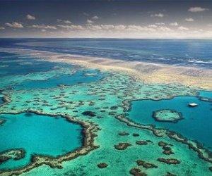 gran-barrera-de-coral-australia