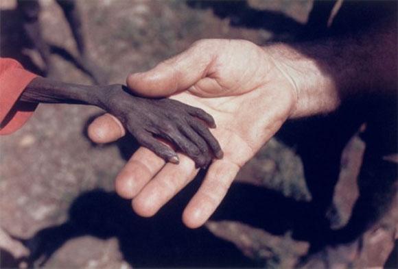 Un misionero agarra la mano de un niño a punto de morir de hambre en Karamoja, Uganda.