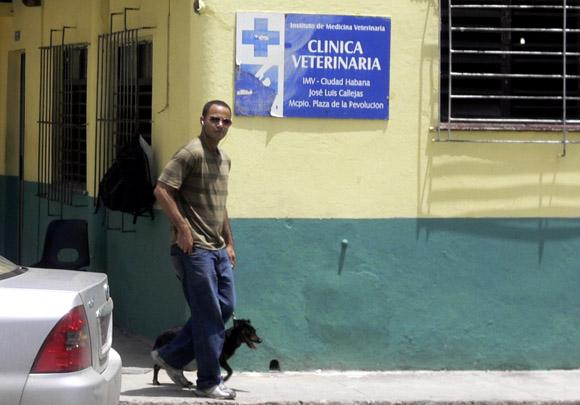 Casi el total de los dueños de animales afectivos, aunque sea una vez en la vida de su mascota, visitan las clínicas veterinarias. Foto: Thais Gárciga/Cubadebate.