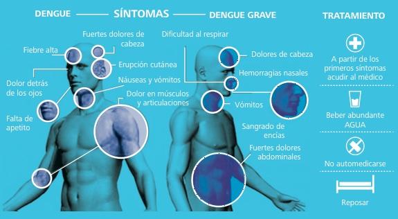 dengue sintomas