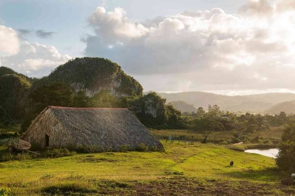 Amid the volcanic hills in the Viñales valley.  Foto: Robert Rausch/ The New York Times