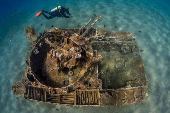 Un tanque jordano sumergido que sirve de arrecife coralino en el mar Mediterráneo, pero que antes fue un arma de guerra para derribar aviones. Foto: Saeed Rashid.