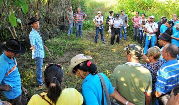La FAO ha promovido en Cuba, junto a las agencias gubernamentales, espacios de intercambio. Foto: Tomada de Granma (Archivo).