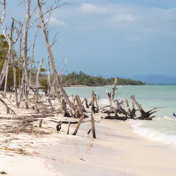 Relax on the beach of Cayo Levisa