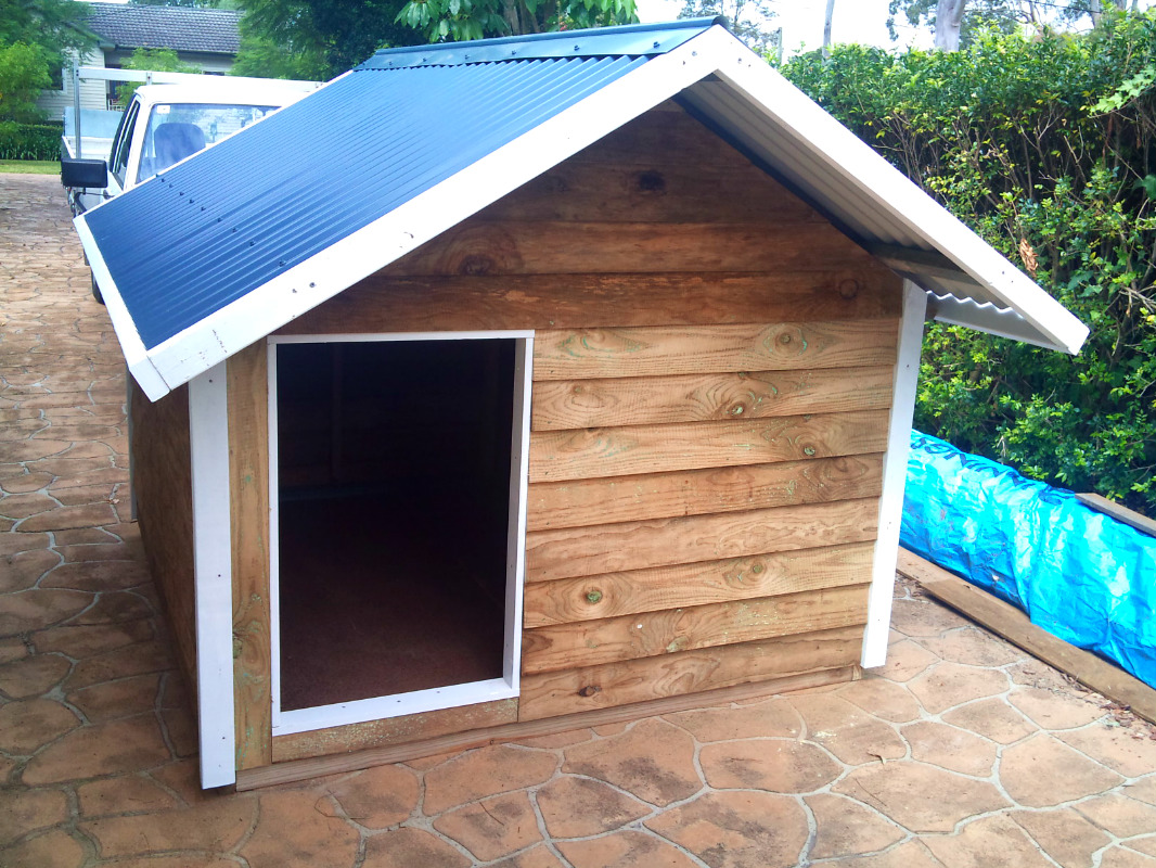 dog kennel 1.8m x 1.8m, gable roof, white trim$795