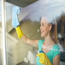 Home Cleaning Business