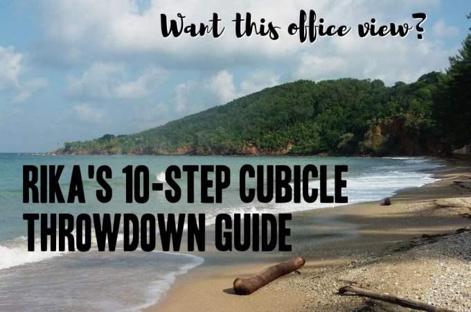 Should You Do a Cubicle Throwdown Like I Did?
