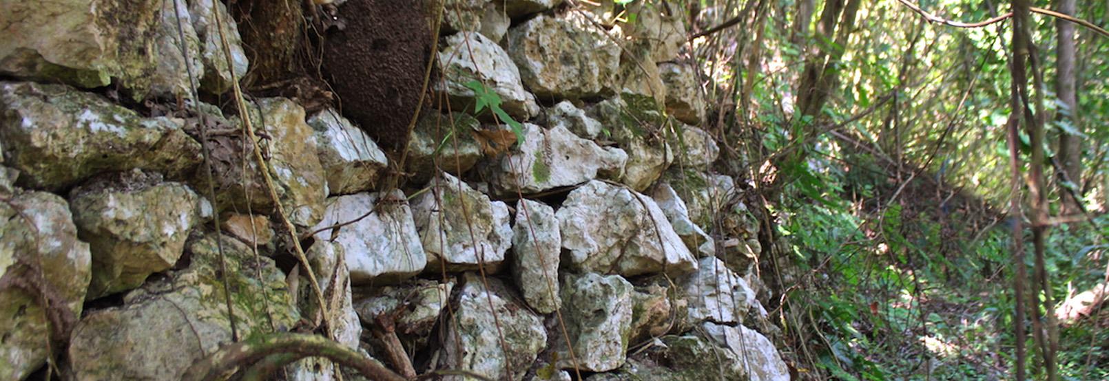 Panhalé zona arqueologica en tabasco