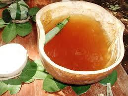 Balche bebida tradicional de tabasco