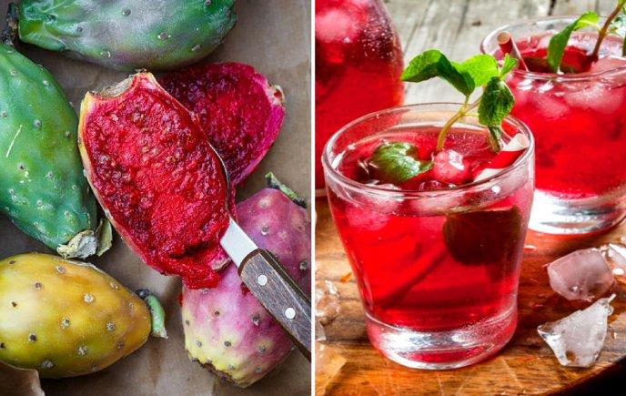 Colonche bebida alcoholica de guanajuato