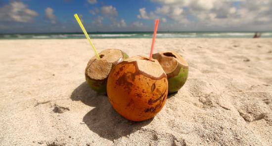 cocos frios bebidas tipicas de sinaloa