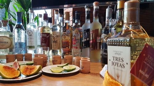 pulque y mezcal bebidas tipicas de guanajuato