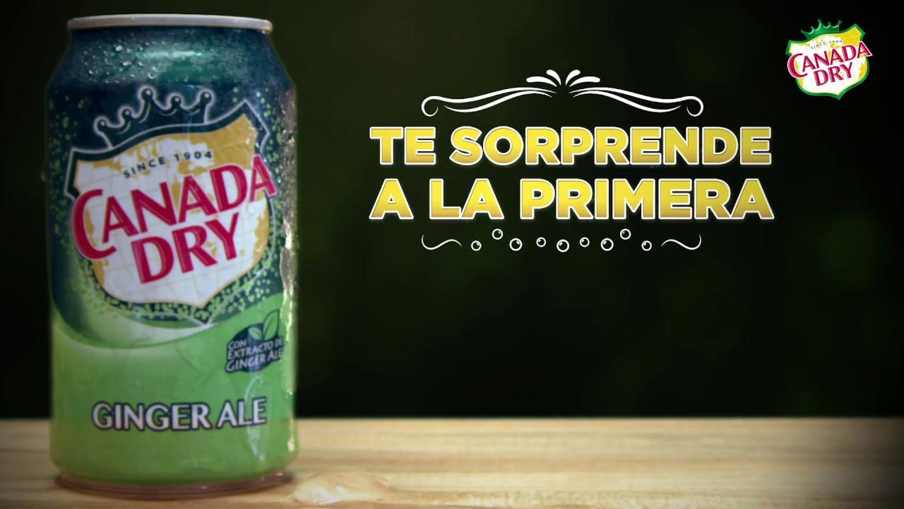 Canada Dry bebida de canada